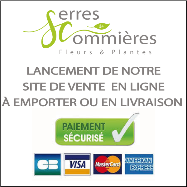 Affiche Click and Collect